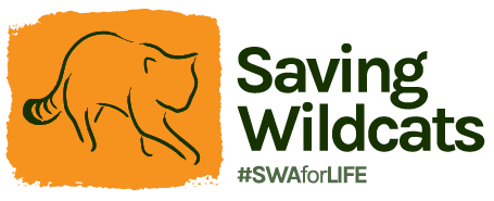 Saving Wildcats