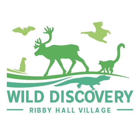 Wild Discovery